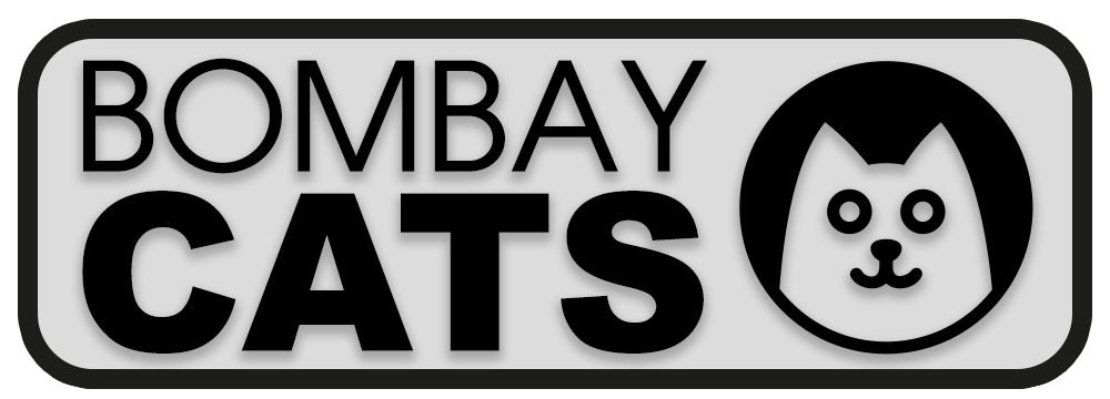 Bombaycats